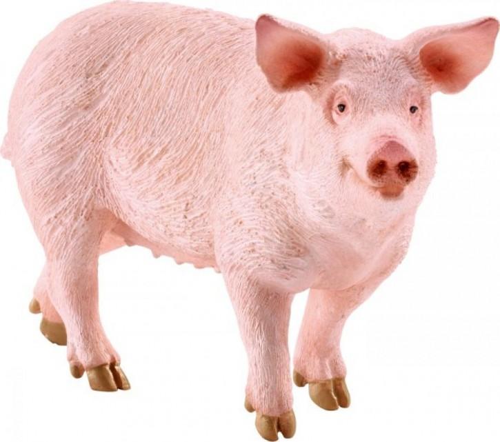 Schleich Farm World 13782 Schwein