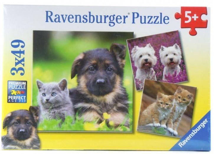Ravensburger Puzzle Hundewelpen & Kätzchen 3 x 49