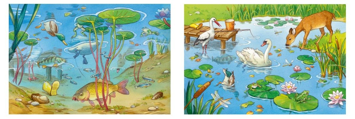 ravensburger kinderpuzzle tiere auf unter wasser 2 x 24. Black Bedroom Furniture Sets. Home Design Ideas