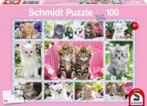 Puzzle Katzenbabys 100 Teile