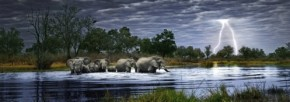 Puzzle Herd of Elephants Panorama 2000 Teile