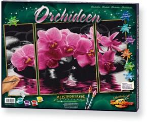 Orchideen Triptychon MnZ 50x80cm