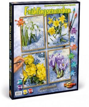 Frühlingserwachen MnZ 4 Bilder 18x24 cm