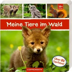 COPPENRATH Meine Tiere im Wald Bilderbuch 18+m